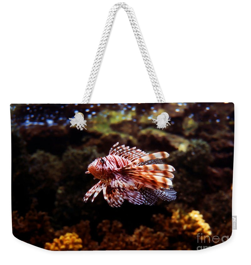Pterois Weekender Tote Bag featuring the photograph Lionfish by Tommy Anderson