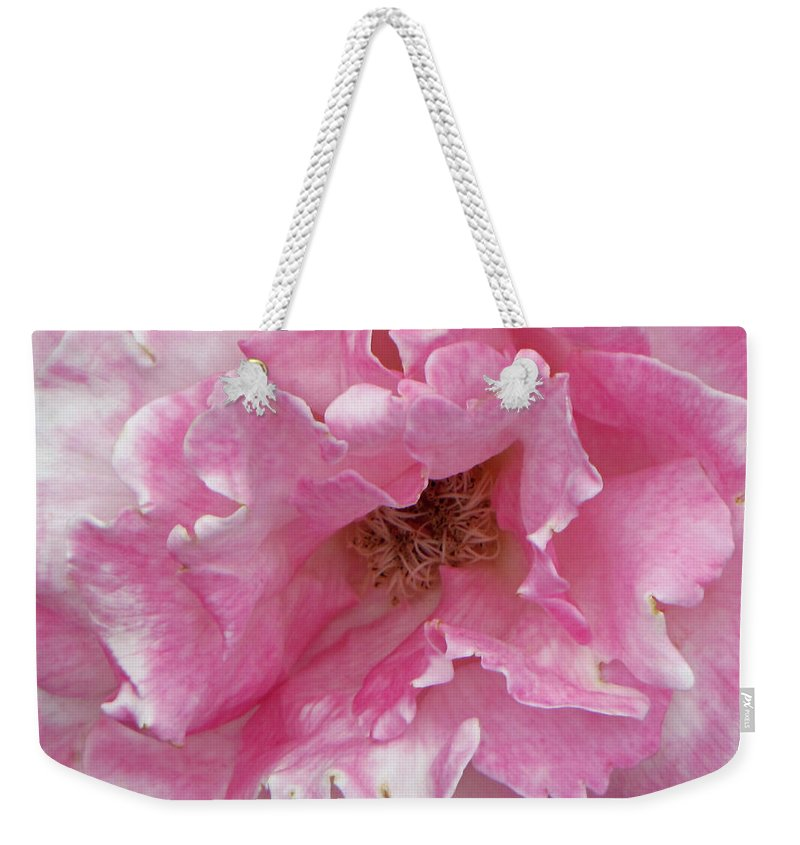 Pink Weekender Tote Bag featuring the photograph Lips Of A Rose by Tikvah's Hope