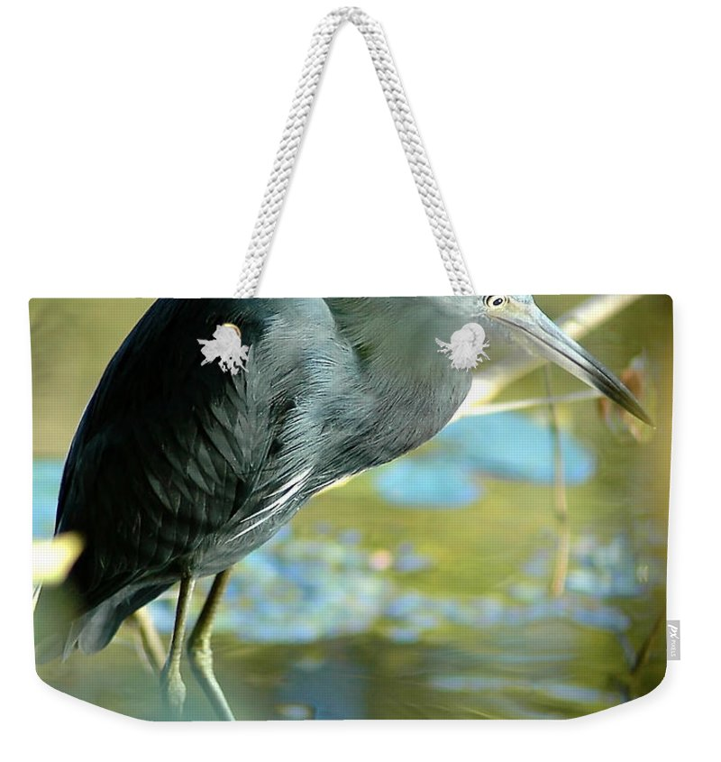 Little Blue Heron Weekender Tote Bag featuring the photograph Little Blue View by Norman Johnson