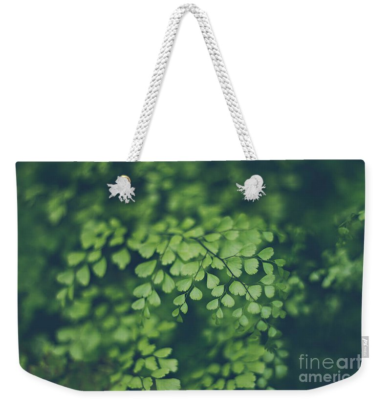 Nature Weekender Tote Bag featuring the photograph Little Green Leaves by Bethany Helzer