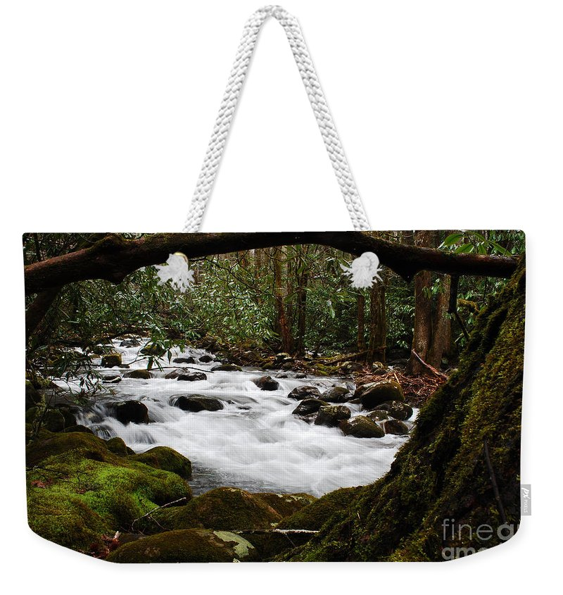 River Weekender Tote Bag featuring the photograph Little Pigeon River In The Smokies by Nancy Mueller