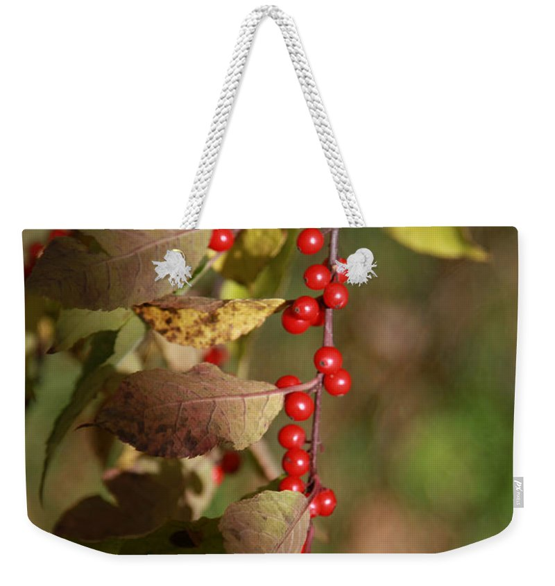 Berries Weekender Tote Bag featuring the photograph Little Red Berries by Deborah Benoit