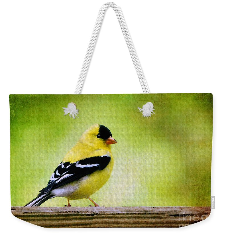 Goldfinch Weekender Tote Bag featuring the photograph Little Sir by Lois Bryan