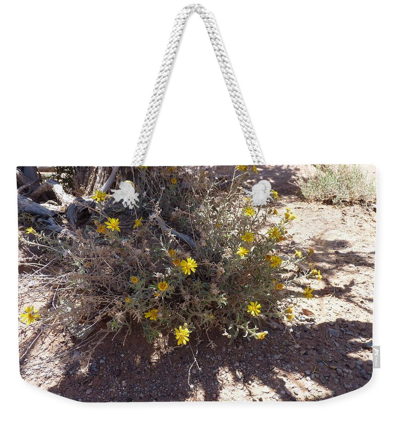 Weekender Tote Bag featuring the photograph Little Suns by Katerina Naumenko