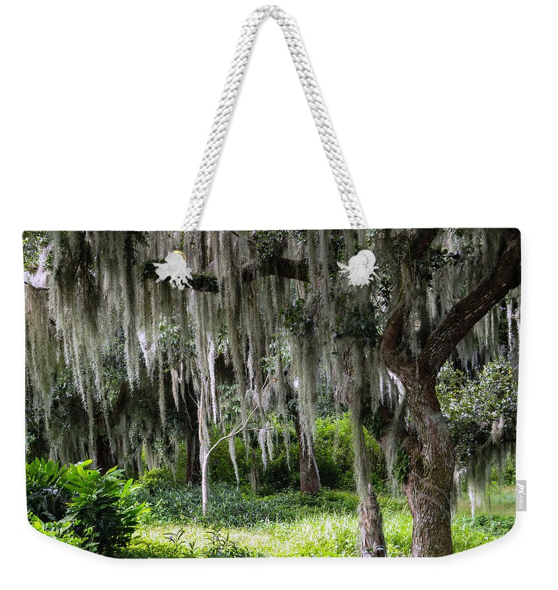Live Oak Weekender Tote Bag featuring the photograph Live Oak Tree II by Zina Stromberg