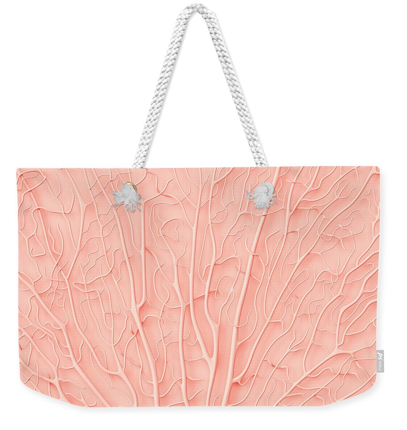 Empty Weekender Tote Bag featuring the photograph Living Coral Color Of The Year 2019 by Artjafara