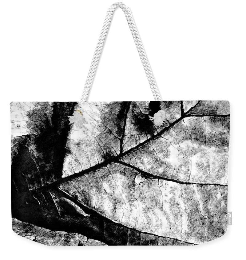 Drawing Weekender Tote Bag featuring the drawing Living Structure I by Iliyan Bozhanov