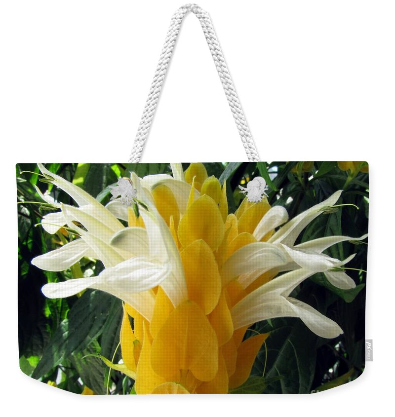 Lollipop Weekender Tote Bag featuring the photograph Lolliepop Plant by Jennifer Wheatley Wolf