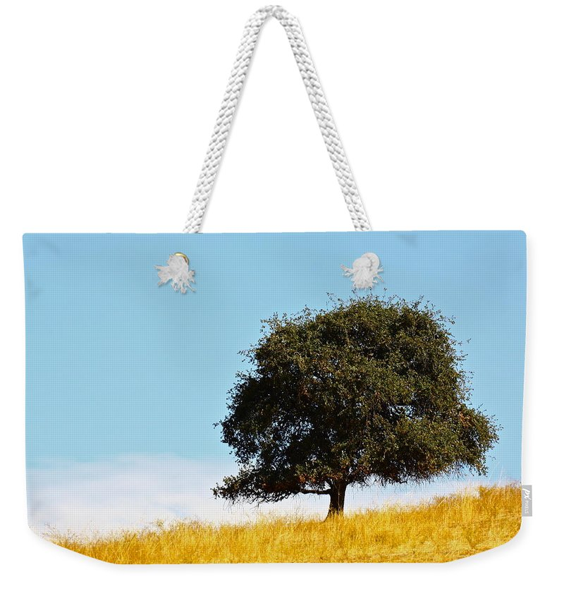 Tree Weekender Tote Bag featuring the photograph Lone Oak by Diana Hatcher
