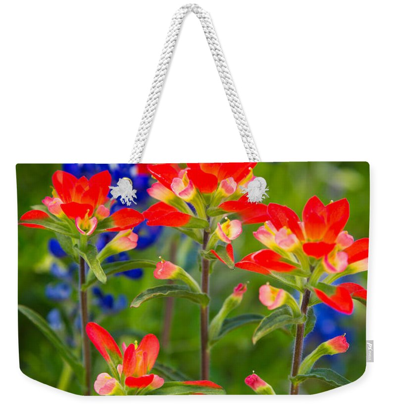 America Weekender Tote Bag featuring the photograph Lone Star Blooms by Inge Johnsson