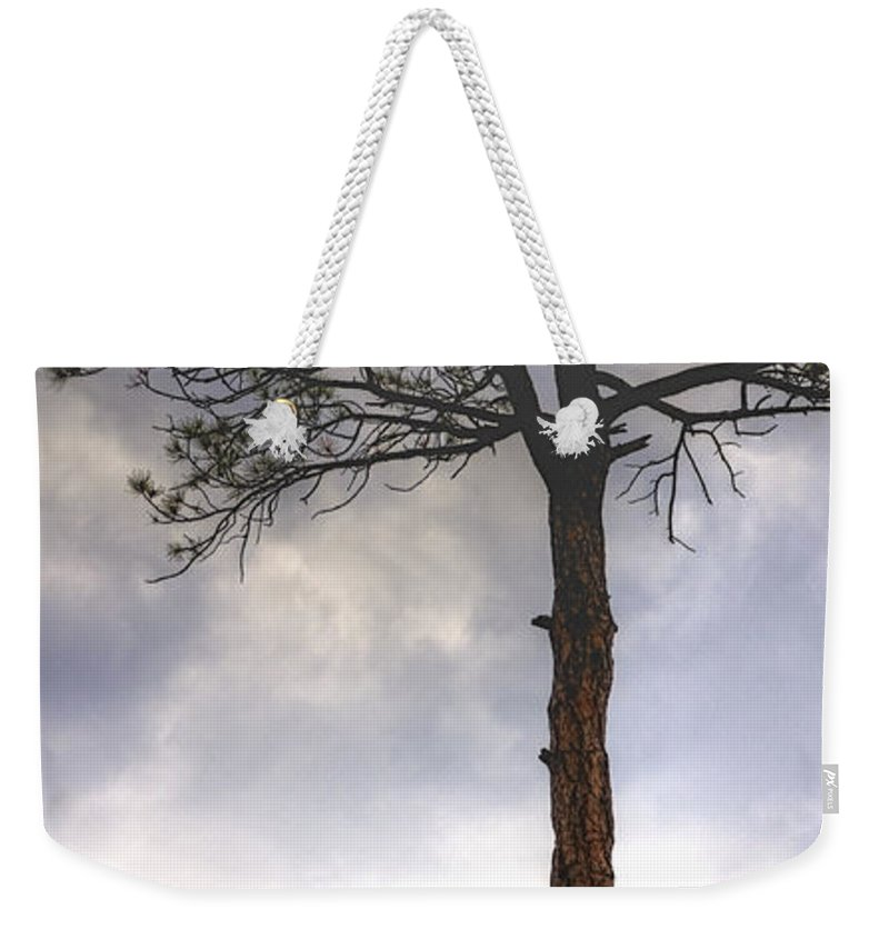 Lone Weekender Tote Bag featuring the photograph Lone Tree 11351 by Jerry Sodorff
