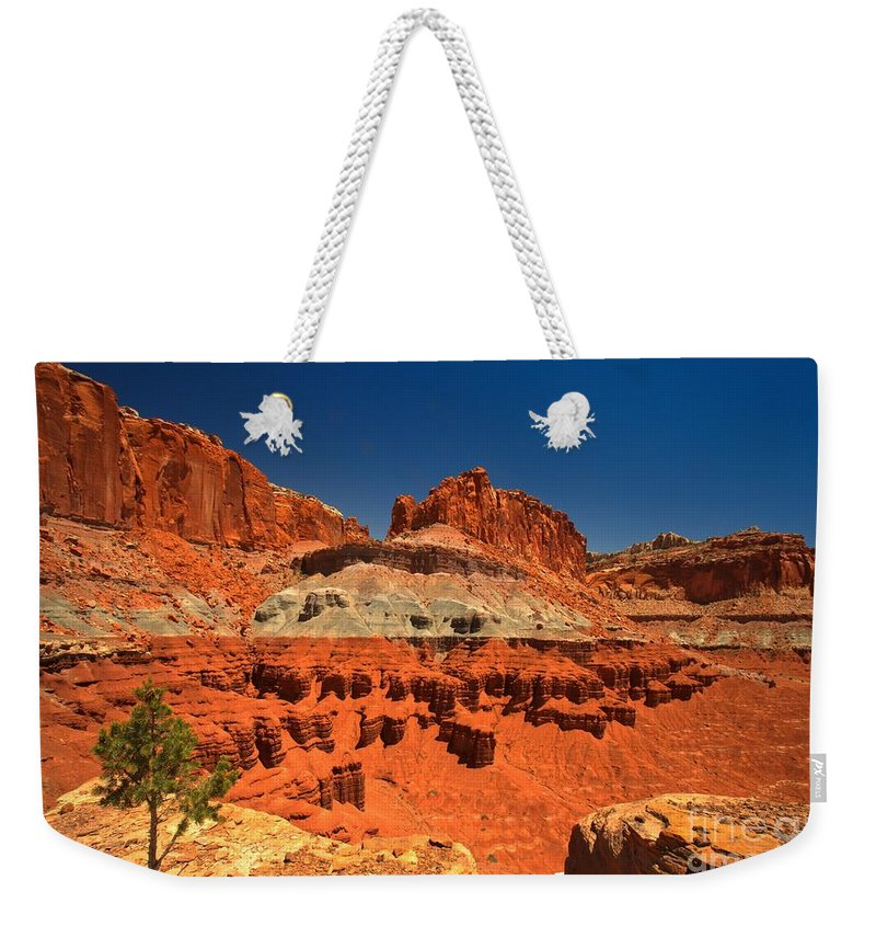 Capitol Reef National Park Weekender Tote Bag featuring the photograph Lone Tree Atop The Waterpocket by Adam Jewell