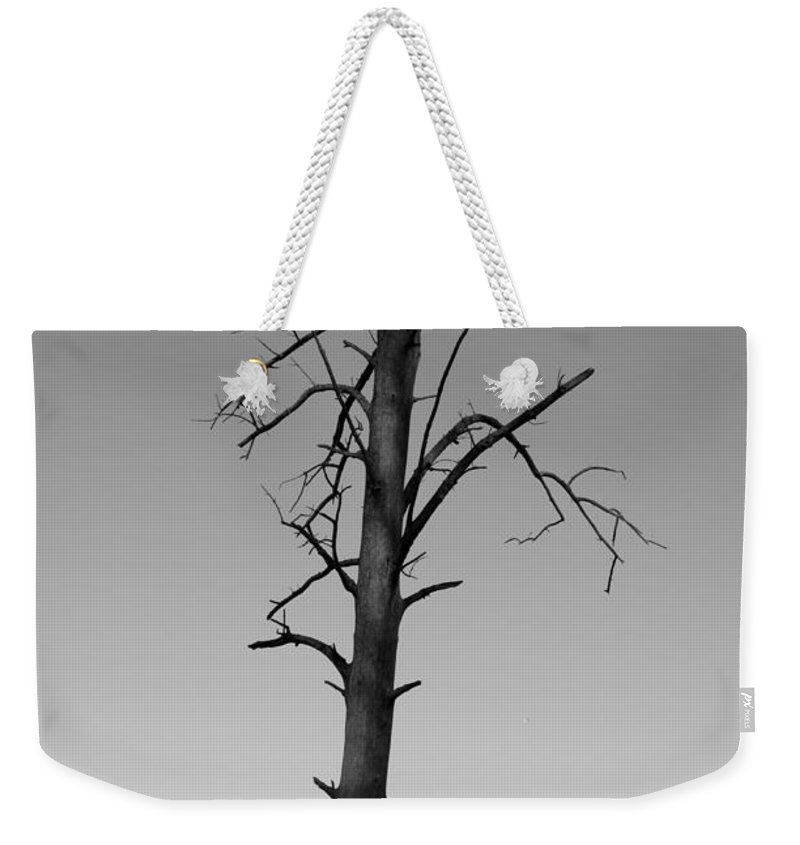 Dead Tree In Water Weekender Tote Bag featuring the photograph Lone Tree by Kitrina Arbuckle