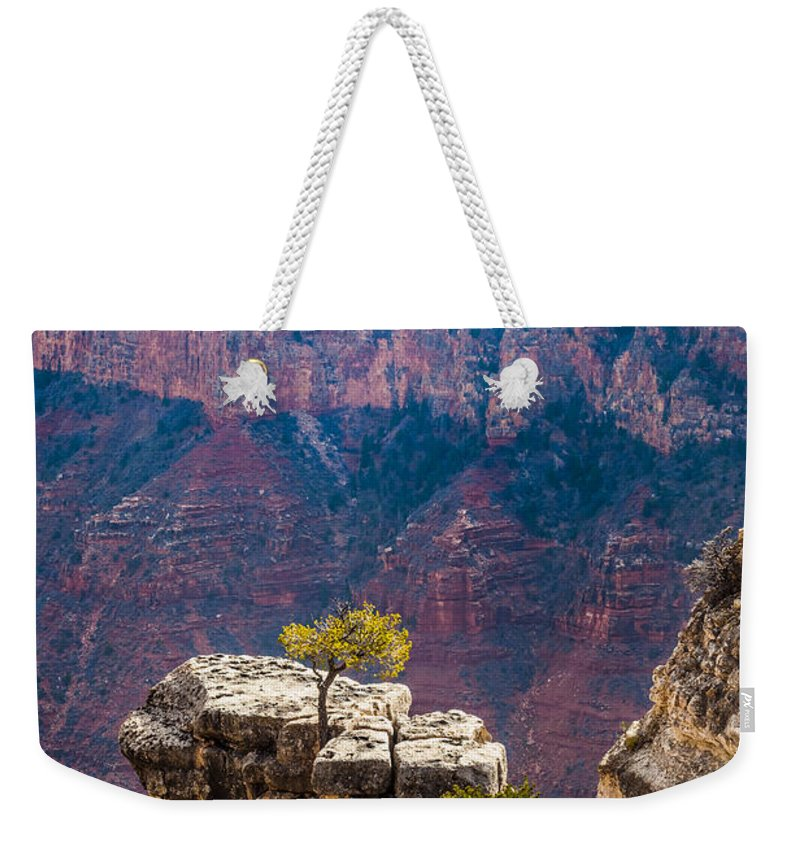 Arizona Weekender Tote Bag featuring the photograph Lone Tree On Outcrop Grand Canyon by Ed Gleichman