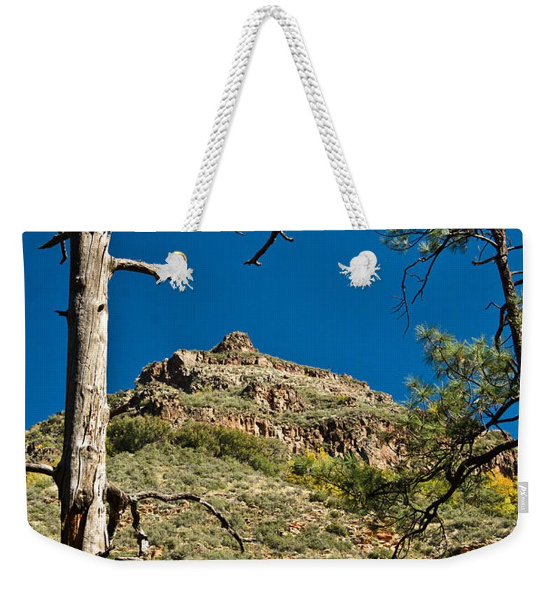 Lone Weekender Tote Bag featuring the photograph Lone Tree On The Mountain by Douglas Barnett