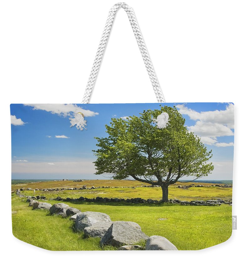 Tree Weekender Tote Bag featuring the photograph Lone Tree With Blue Sky In Blueberry Field Maine by Keith Webber Jr