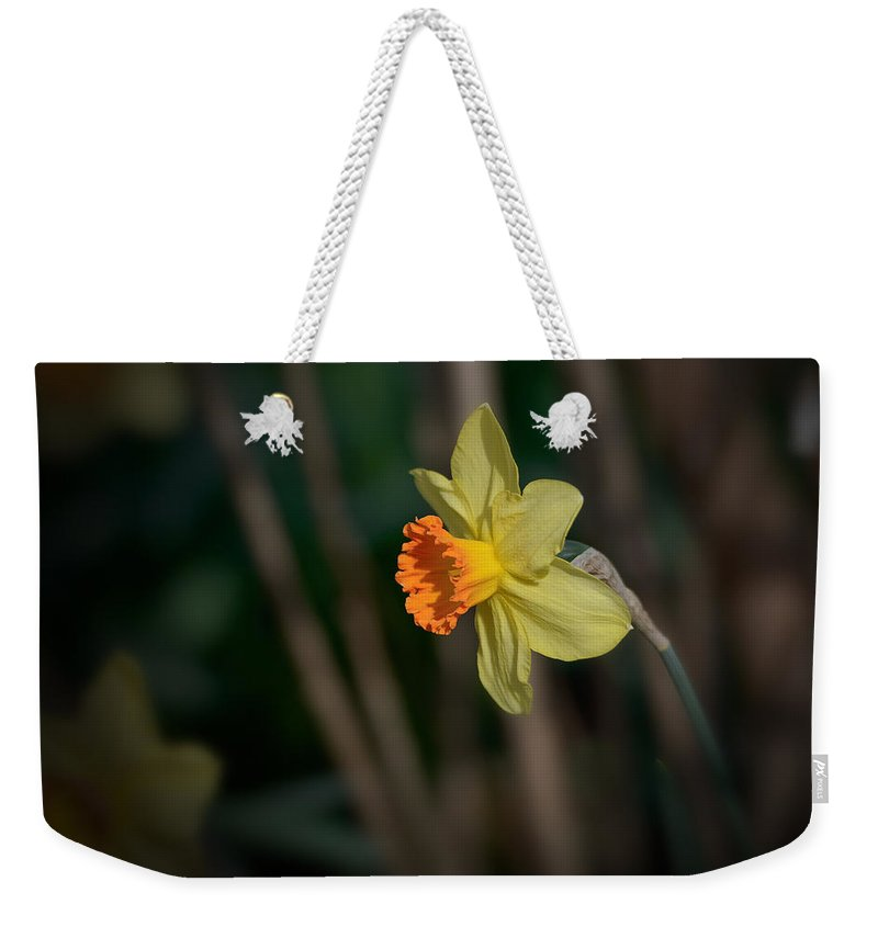 Flowers & Plants Weekender Tote Bag featuring the photograph Lonely Daffodil by Charlie Choc