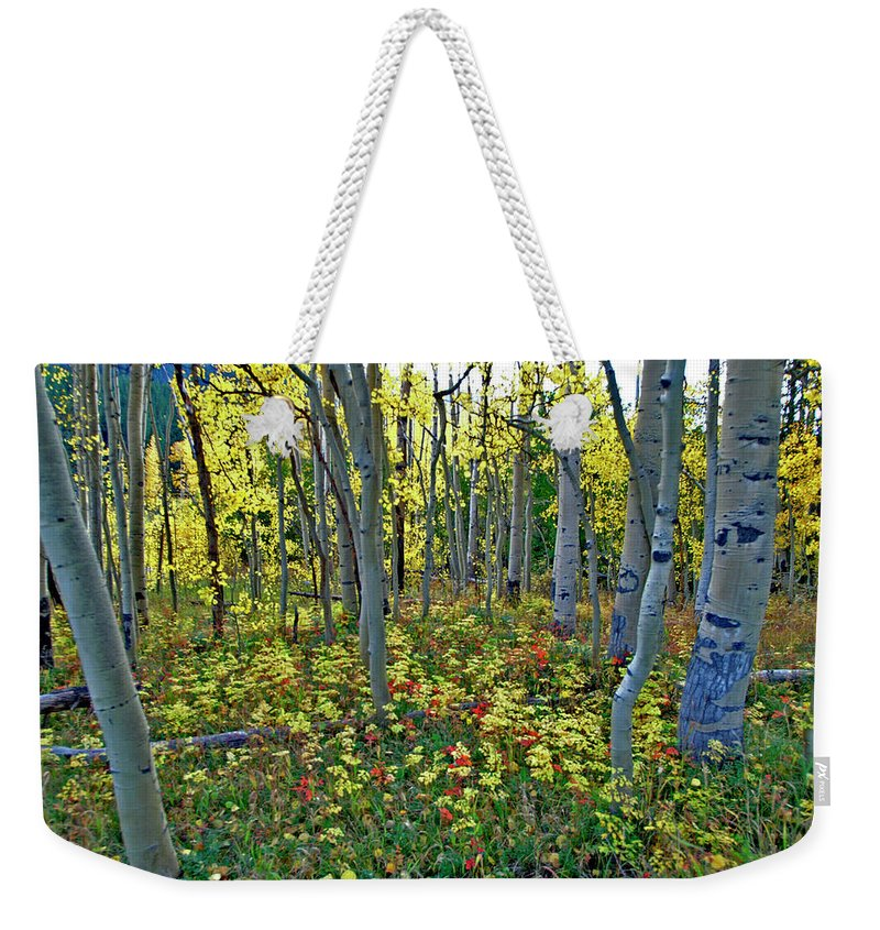 Independence Pass Weekender Tote Bag featuring the photograph Lonely September by Jeremy Rhoades