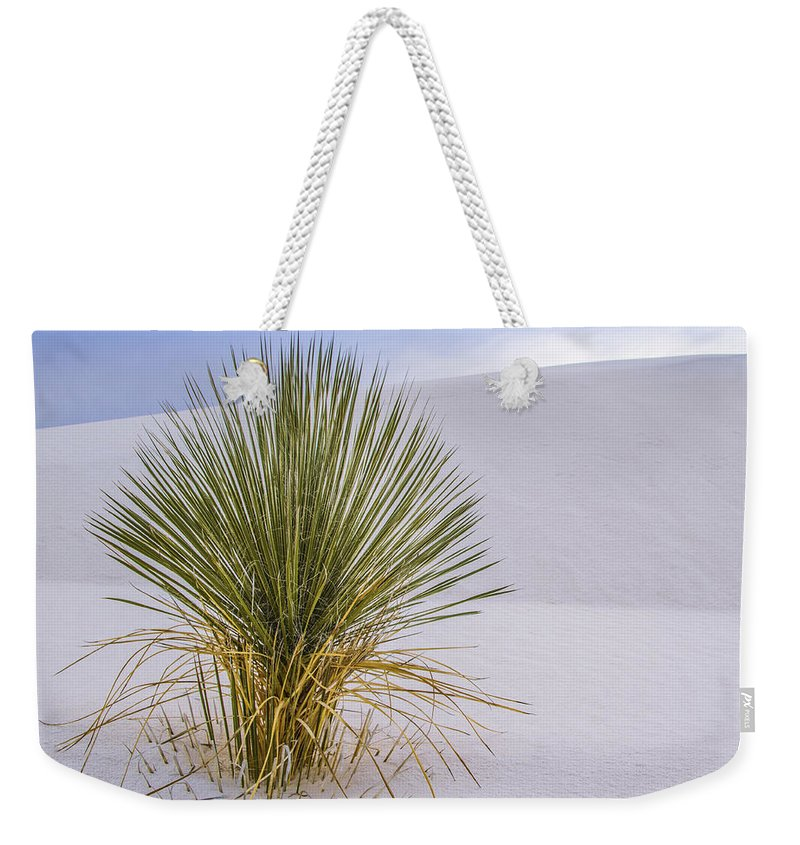 Jean Noren Weekender Tote Bag featuring the photograph Lonely Yucca Plant In White Sands by Jean Noren