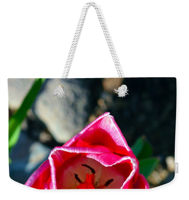 Flower Weekender Tote Bag featuring the photograph Look Inside by Brent Dolliver