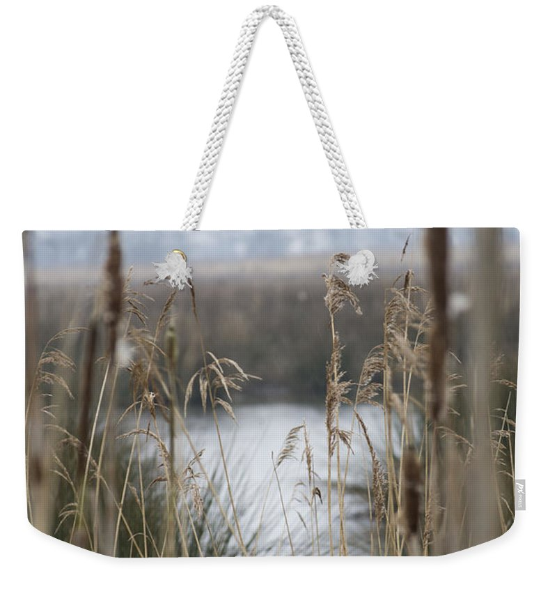 Reeds Weekender Tote Bag featuring the photograph Looking Through The Reeds by Spikey Mouse Photography