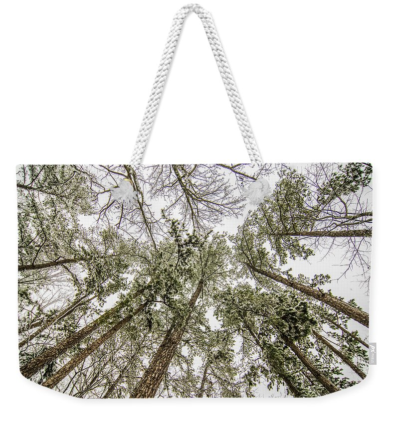 Looking Weekender Tote Bag featuring the photograph Looking Up At Snow Covered Tree Tops by Alex Grichenko
