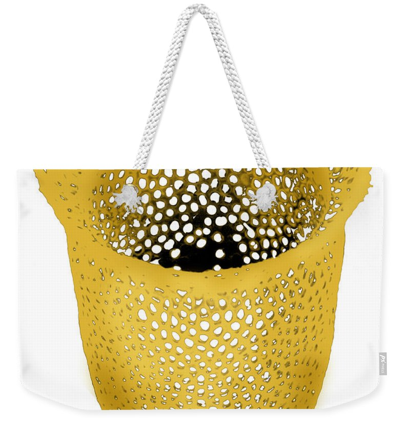 Color Weekender Tote Bag featuring the photograph Lorica Shell Of Tintinnid Ciliate Sem by Greg Antipa