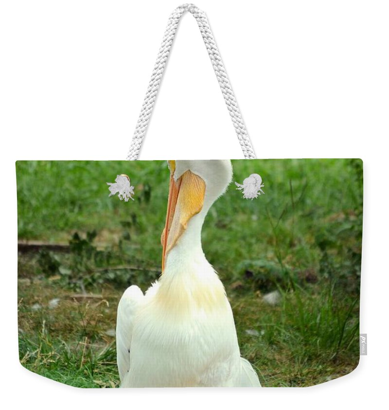 Losing A Feather Weekender Tote Bag featuring the photograph Losing A Feather by Maria Urso