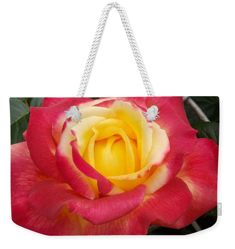 Roses Weekender Tote Bag featuring the photograph Losing The Yellow by Catherine Gagne