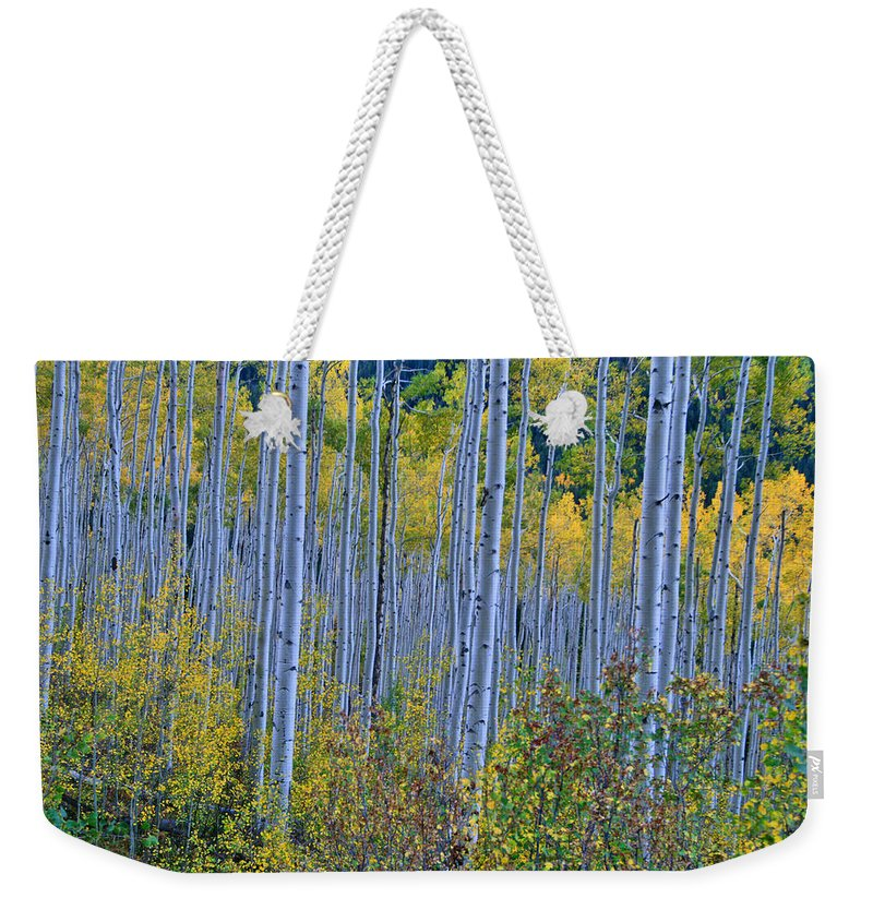 Aspen Grove Weekender Tote Bag featuring the photograph Lost In The Crowd by Jeremy Rhoades