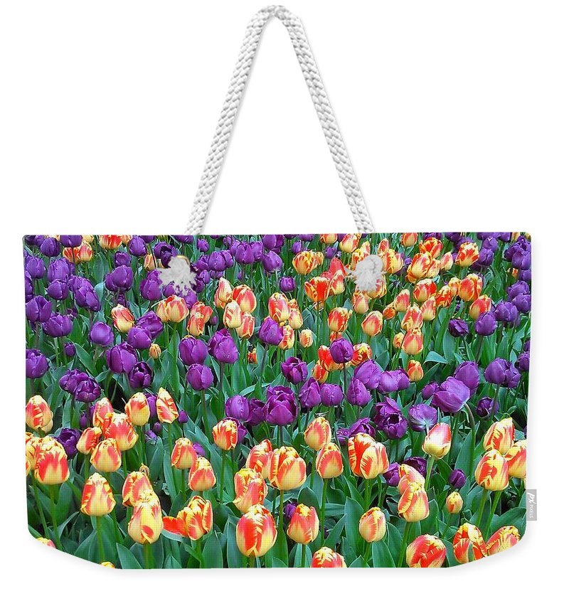 Purple Weekender Tote Bag featuring the photograph Lots Of Tulips by Catie Canetti