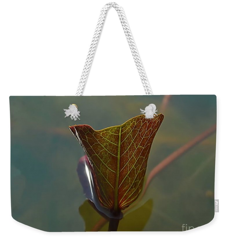 Michelle Meenawong Weekender Tote Bag featuring the photograph Lotus Leaf by Michelle Meenawong