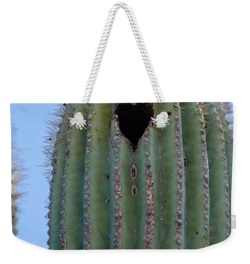 Heart Weekender Tote Bag featuring the photograph Love Shack Saguaro With A Heart by Michael Moriarty