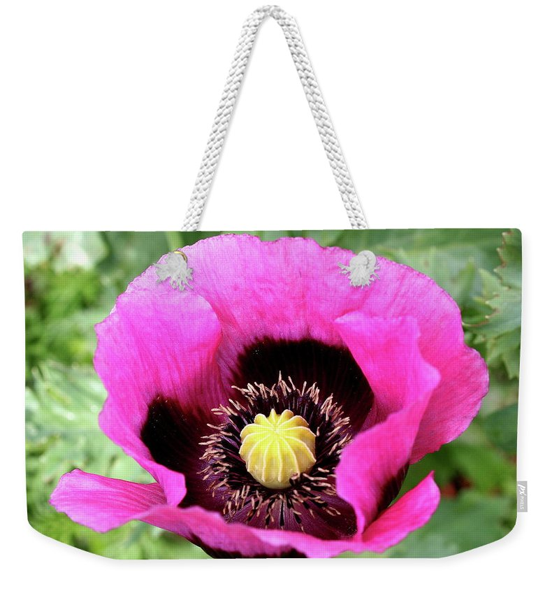 Poppy Weekender Tote Bag featuring the photograph Lovely Springtime by Christiane Schulze Art And Photography