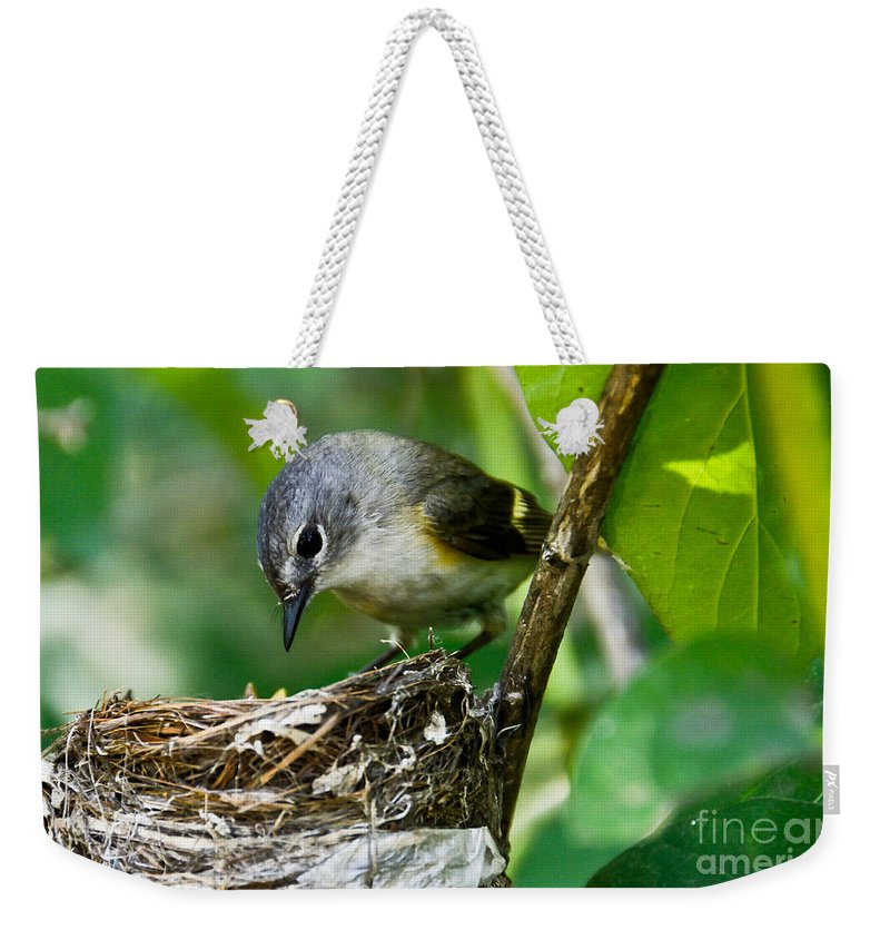 New Life Weekender Tote Bag featuring the photograph Loving Gaze by Cheryl Baxter
