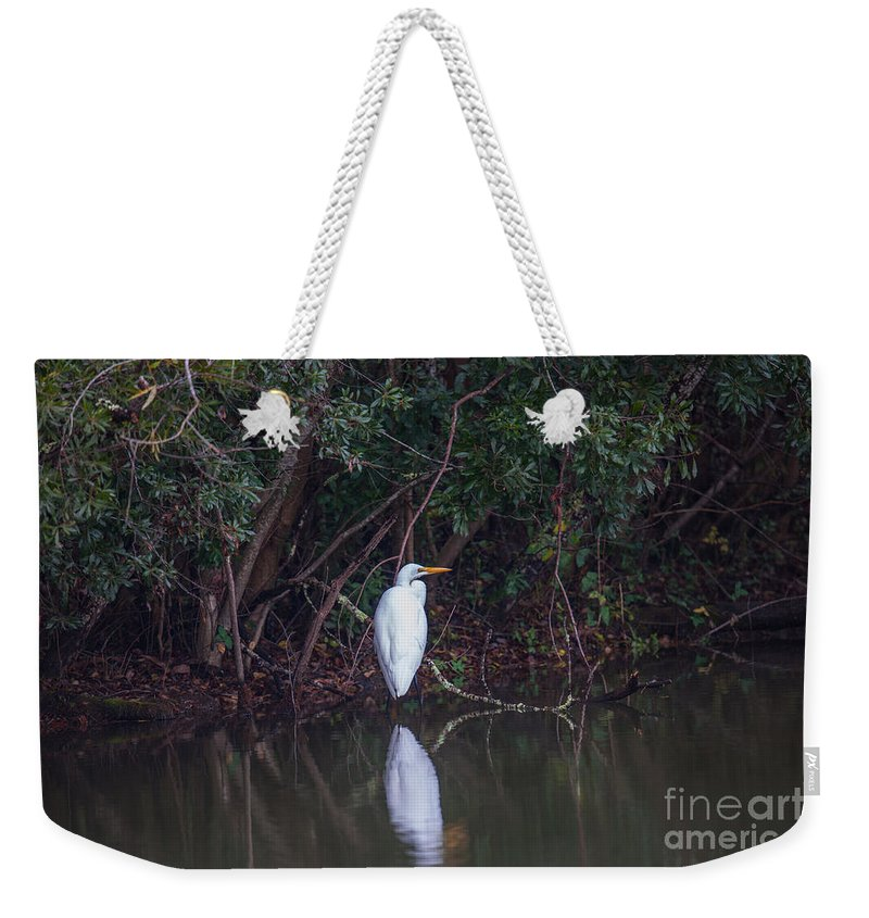 White Heron Weekender Tote Bag featuring the photograph Lowcountry Pond Life by Dale Powell