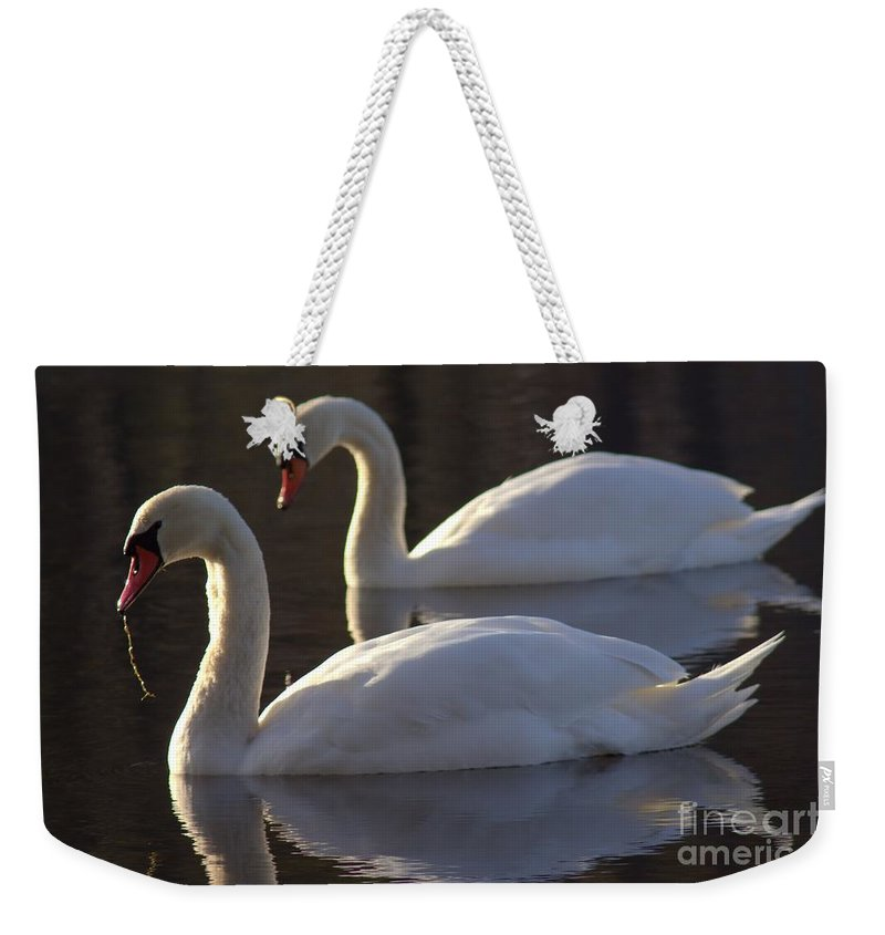 Swan Weekender Tote Bag featuring the photograph Lunch Date by Kenny Glotfelty