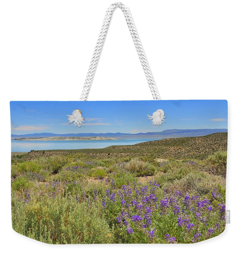 Mono Weekender Tote Bag featuring the photograph Lupines At Mono Lake by Lynn Bauer
