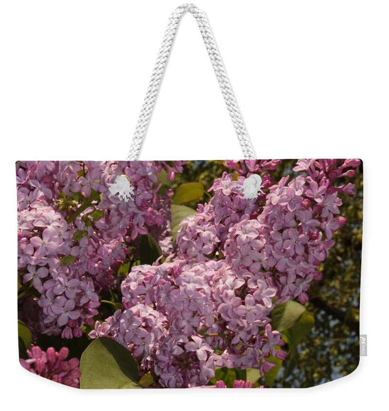Lilacs Weekender Tote Bag featuring the photograph Lush Lilacs by Carol Groenen