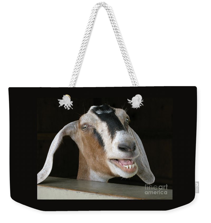 Goat Weekender Tote Bag featuring the photograph Maa-aaa by Ann Horn
