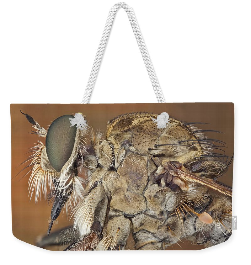 Image Digitally Manipullated Weekender Tote Bag featuring the photograph Machimus Sp. 31 by Javier Torrent - Vwpics