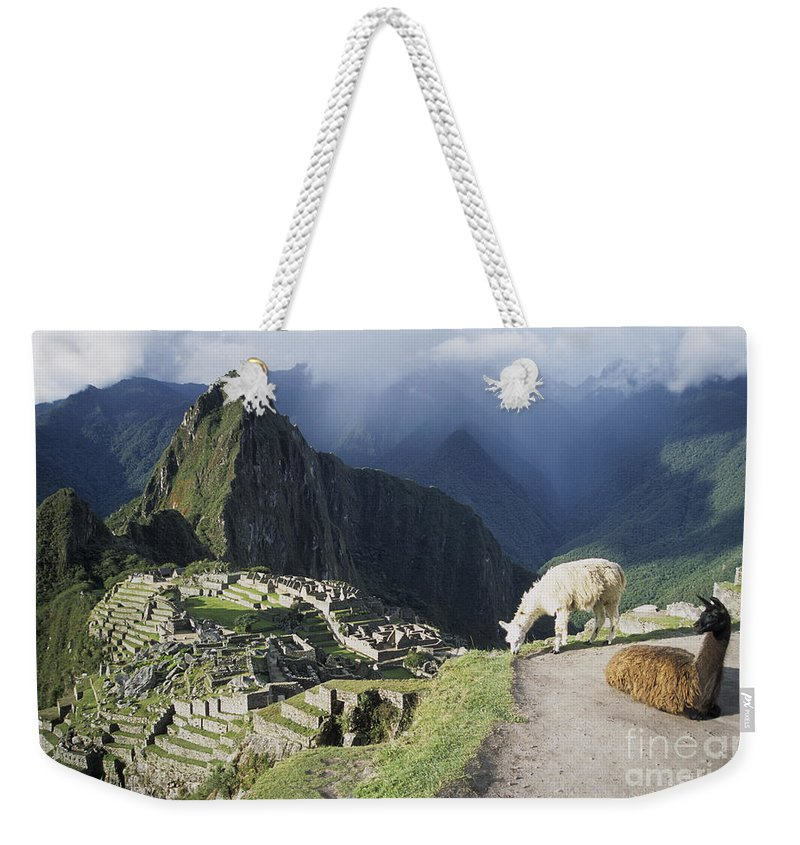 Machu Picchu Weekender Tote Bag featuring the photograph Machu Picchu And Llamas by James Brunker