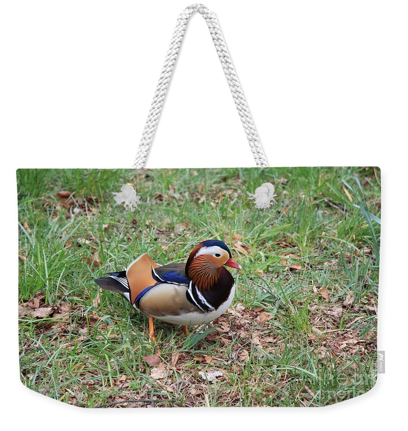 Duck Weekender Tote Bag featuring the photograph Madarin Duck by Christiane Schulze Art And Photography