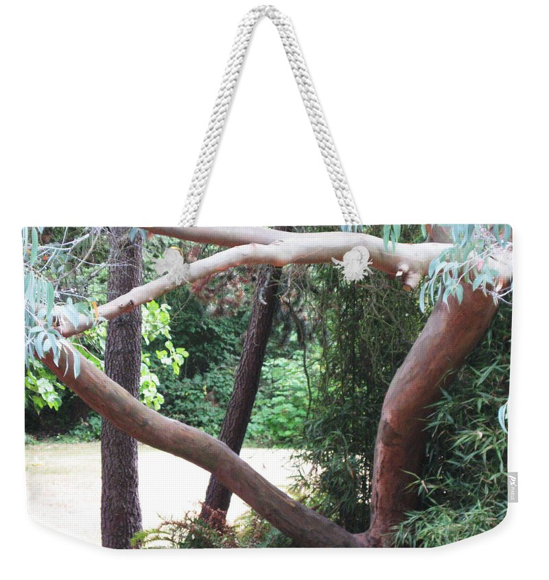 Madrona Weekender Tote Bag featuring the photograph Madrona by David Trotter