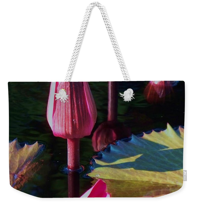 Photograph Weekender Tote Bag featuring the photograph Magenta Lily Pads by Eric Schiabor