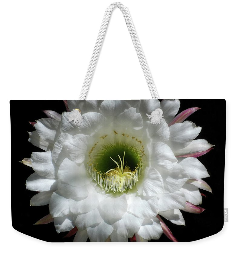 Arizona Weekender Tote Bag featuring the photograph Magic Of The Night by Saija Lehtonen