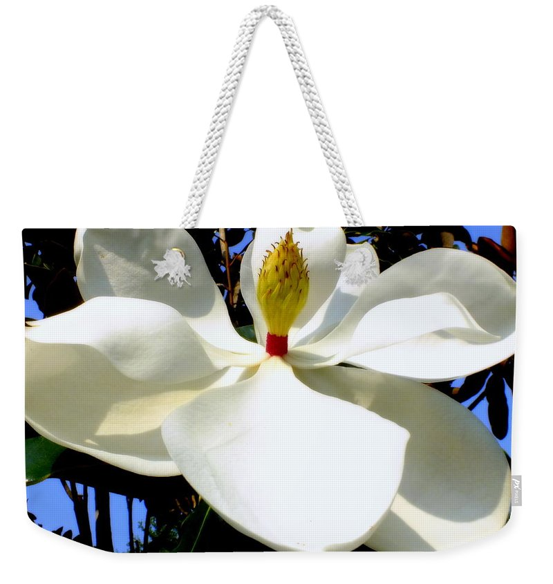 Magnolias Weekender Tote Bag featuring the photograph Magnolia Carousel by Karen Wiles