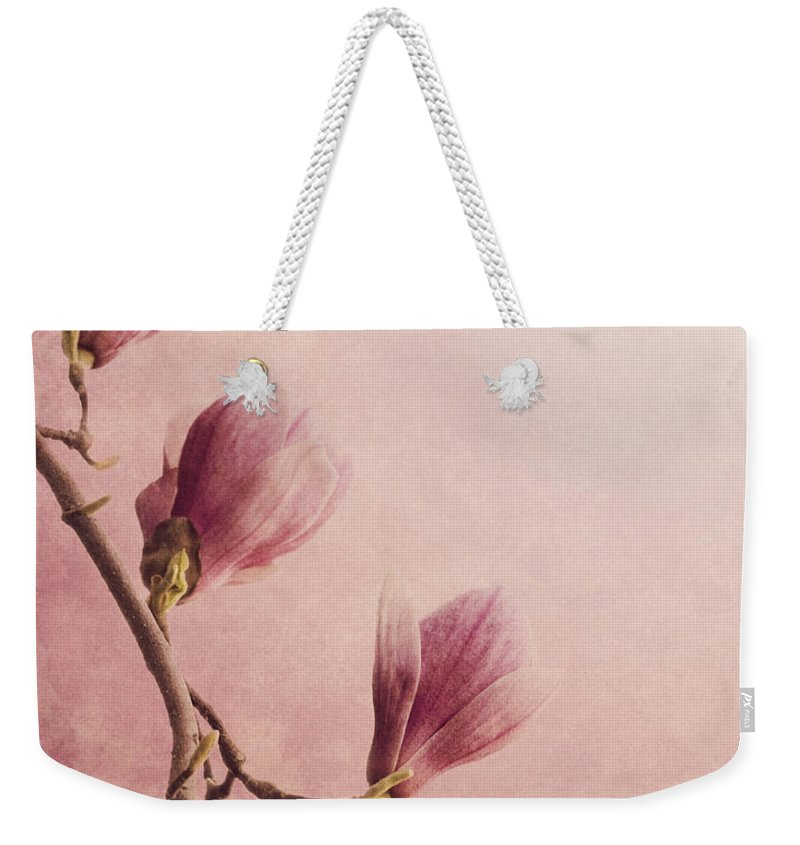 Magnolia Weekender Tote Bag featuring the photograph Magnolia On Pink Background by Jelena Jovanovic