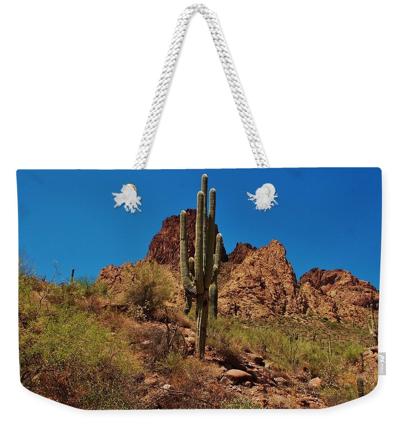 America Weekender Tote Bag featuring the photograph Majestic Saguaro by Dany Lison