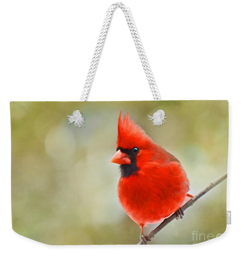 Cardinal Weekender Tote Bag featuring the photograph Male Cardinal On Angled Twig - Digital Paint by Debbie Portwood